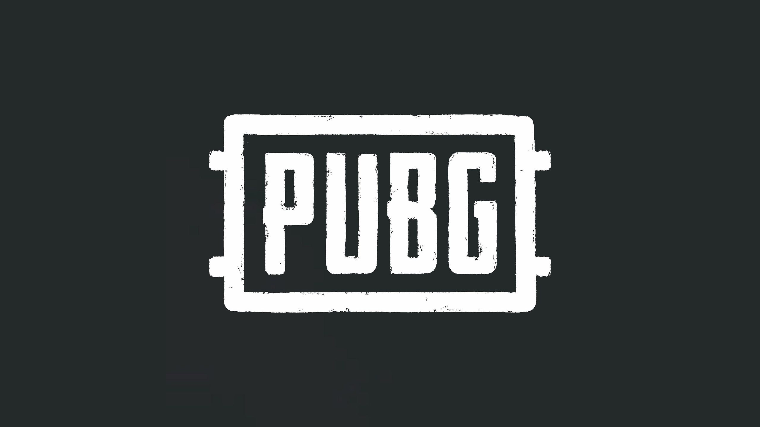 Court-to-Make-the-Final-Decision-on-PUBG-Ban