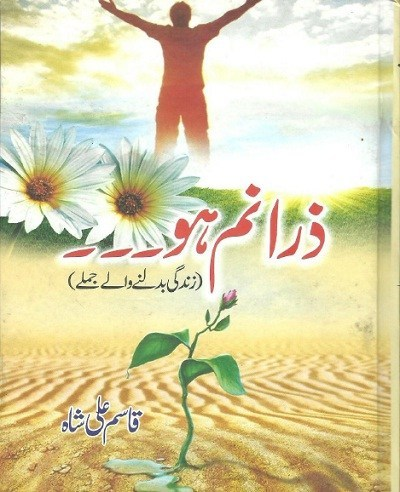 Zara-Nam-Ho-By-Qasim-Ali-Shah-Pdf-Download
